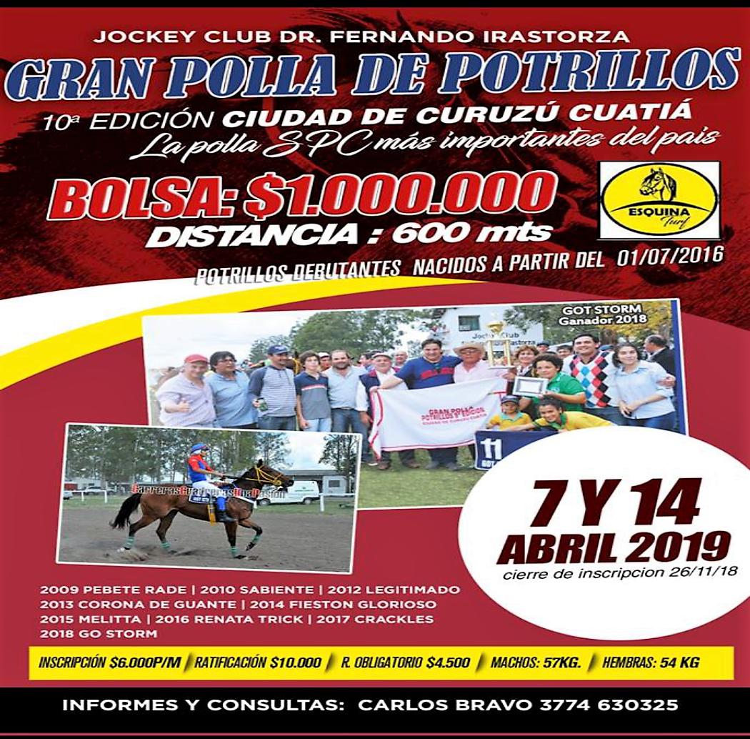 C. CUATIA - POLLA DE POTRILLOS