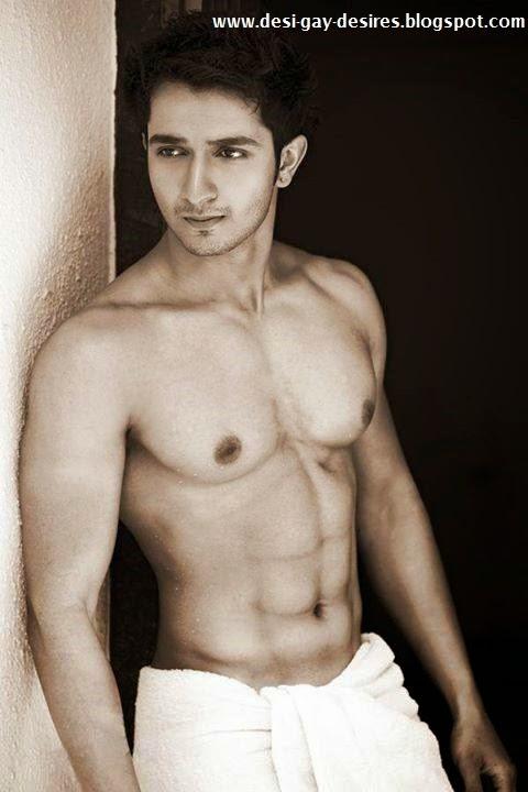 Desi Gay Desires: 2014