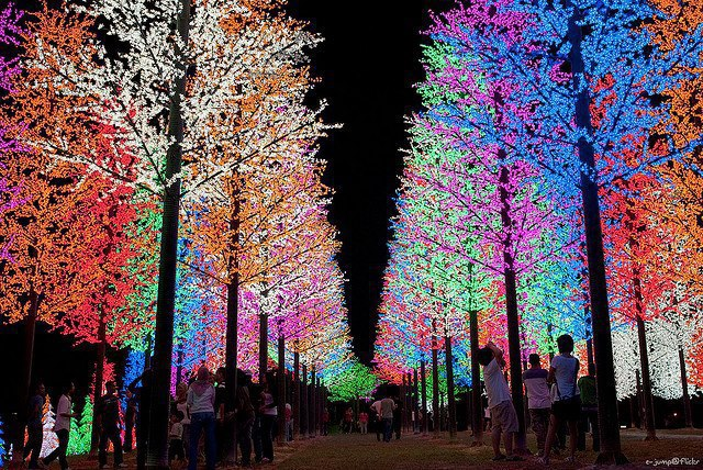 Let s talk christmas lights colorful or classic white