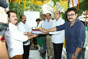 Gopal Gopala Movie Opening event Photos-thumbnail-7