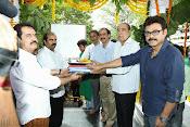 Gopal Gopala Movie Opening event Photos-thumbnail-7