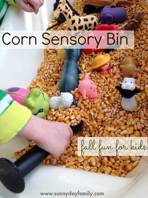 Make a corn sensory bin for a fun farm themed activity for kids! Perfect for Fall.