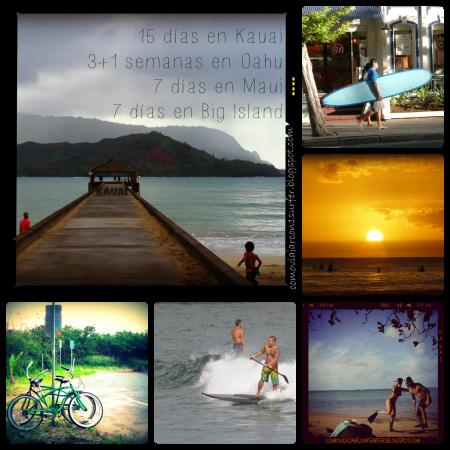 Hawai'i Blog