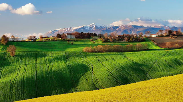 Italy Nature Scenery Fields Spring Rapeseed Sky HD Wallpaper