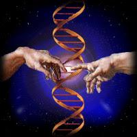 God and science evolution