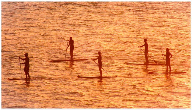 stand up paddle,sup,hossegor,hossegor surf club