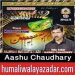 http://audionohay.blogspot.com/2014/11/aashu-chaudhary-nohay-2015.html
