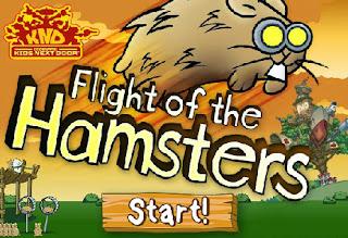 Hamsters voadores