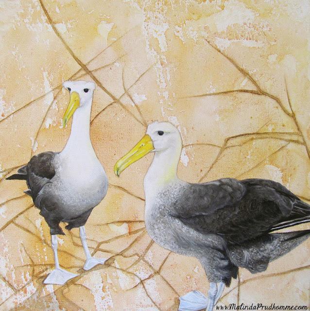 mixed media art, mixed media artist, travel artist, original artwork, original paintings, bird art, bird paintings, albatross painting