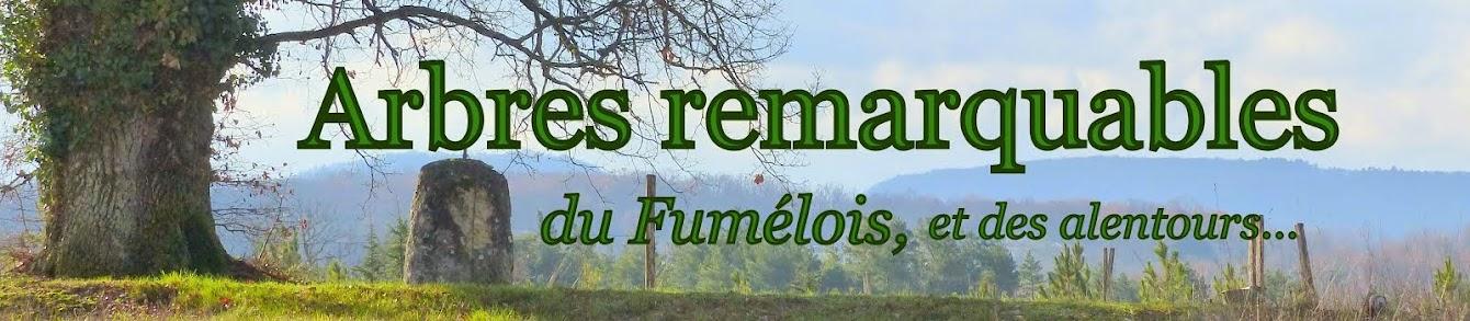 Arbres remarquables du Fumélois, et des environs...