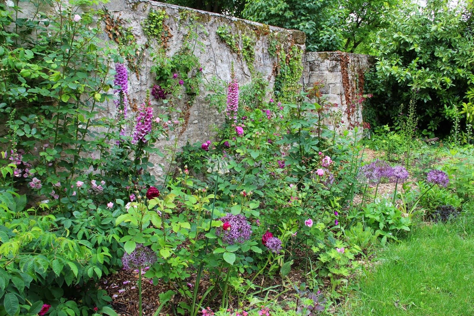 Derri re les murs de mon jardin travaux d automne - Derriere les murs de mon jardin ...