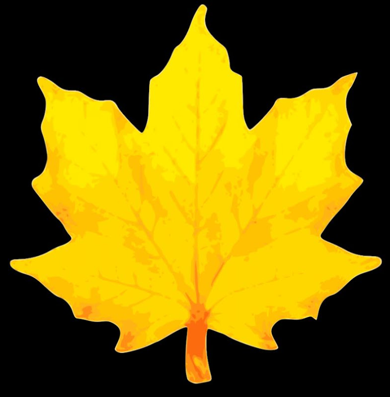 Fall leaves autumn leaves clip art free clipart 3