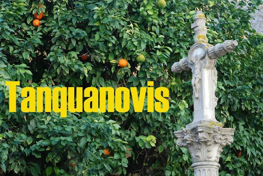 Tanquanovis