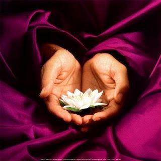 Lo exterior es solo el reflejo de lo interior, quien cambia interiormente origina un nuevo orden