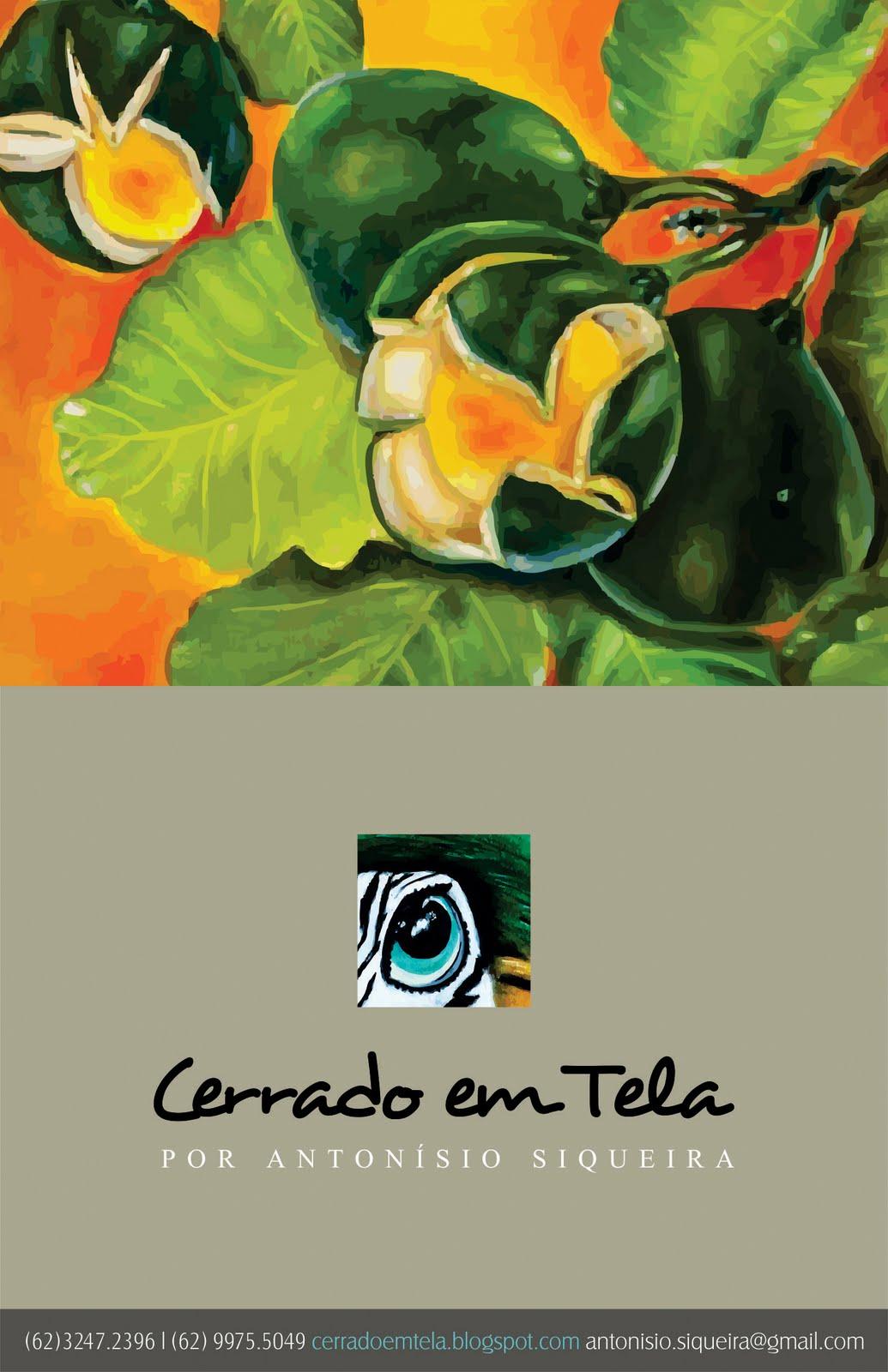 http://3.bp.blogspot.com/-KZRVfIwS1_o/TqXAwd04-4I/AAAAAAAAAxc/q8Rmd7IhcZk/s1600/Cerrado+em+Tela.jpg