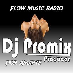 Enrique Iglesias Por Amarte Dj Promix