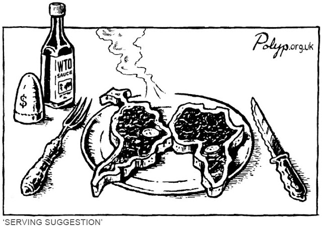 Sense Masala | Polyp WTO Serving Suggestion Cartoon |