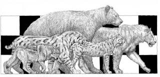 Animales de las Cavernas Leon%2Bcavernario