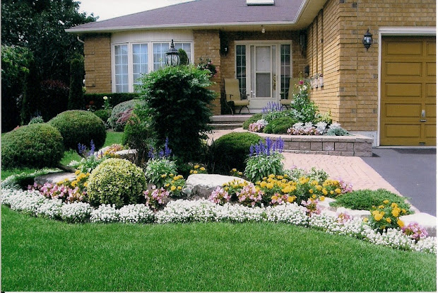wyss report curb appeal