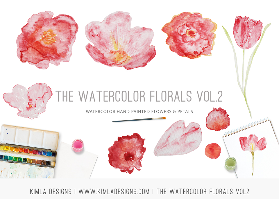 http://kimladesigns.com/collections/design-elements/products/watercolor-florals-vol2
