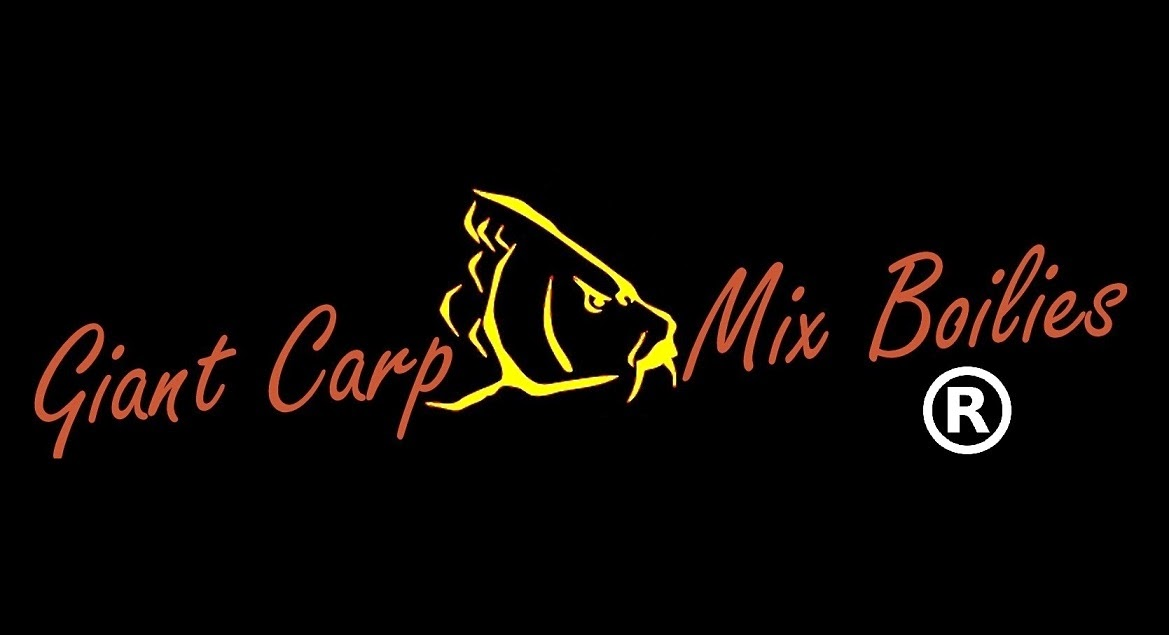 Giant Carp & Barbel fishing - Carpas e Barbos  Gigantes  -  Carpfishing  em Portugal