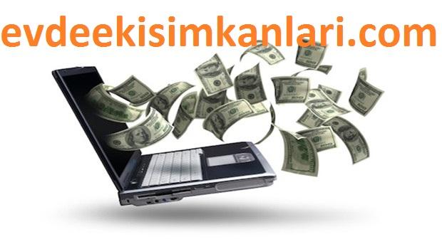 İnternet Sitesi Açarak Para Kazanmak
