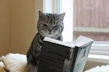 What Are You Reading, Miss Kitty?