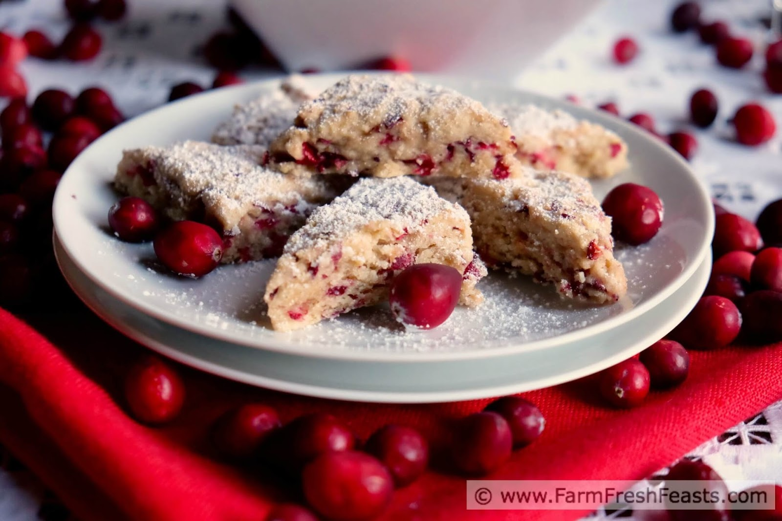 Farm fresh feasts fresh cranberry mini scones for What to make with fresh cranberries