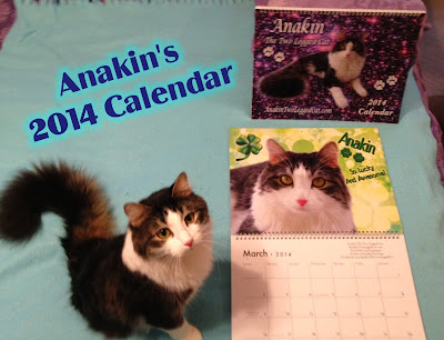Anakin The Two Legged Cat 2014 Calendar