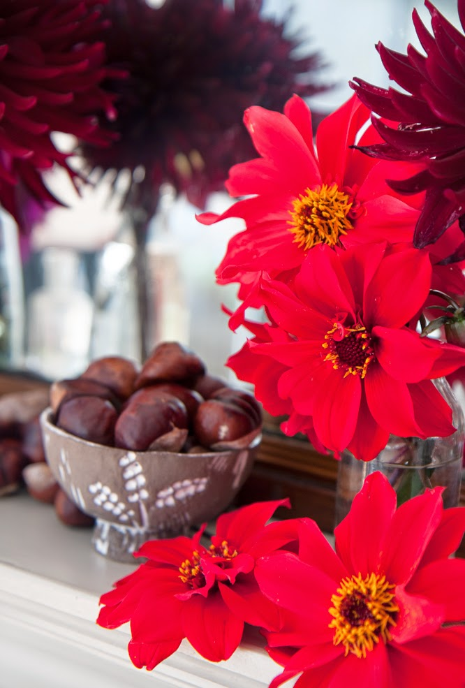 Dahlia's from the garden and conkers too - by  Alexis at www.somethingimade.co.uk
