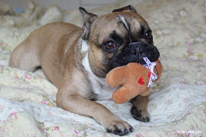 Hundespielzeug Lebkuchenmann