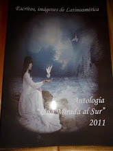 "Antologia ""Una Mirada al Sur 2011"""