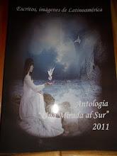 """Antologia """"Una Mirada al Sur 2011"""""""