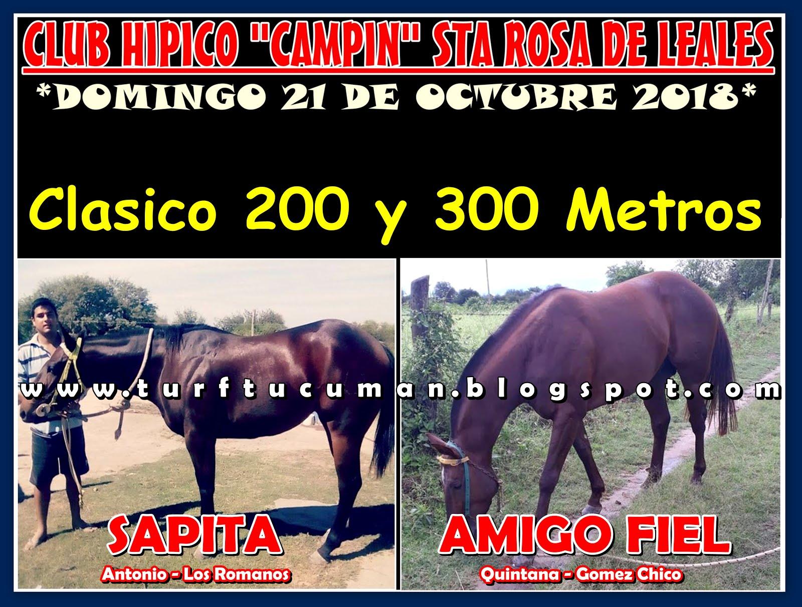 SAPITA VS AMIGO FIEL