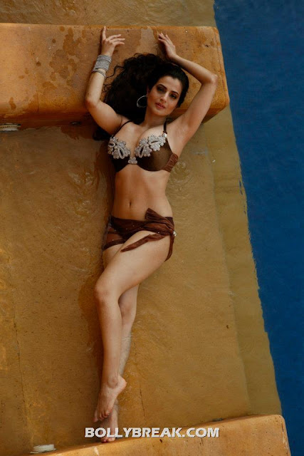 Amisha looks super hot n this choclate bikini with rhinestones. She loves to show her navel.  -  Ameesha Patel Hot Bikini Pics