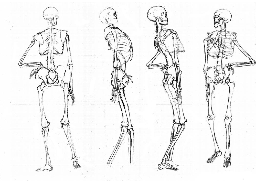Pauses courtes jean jacques - Dessiner un squelette ...