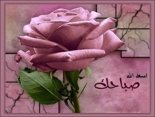 صباح ومساء الخير   شبكة خوره العربيه photos_sabah_al-khai