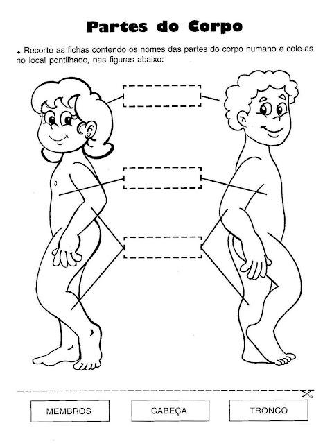 Atividades de ciências 1 ano fundamental corpo humano