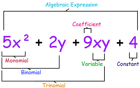 write an algebraic expression