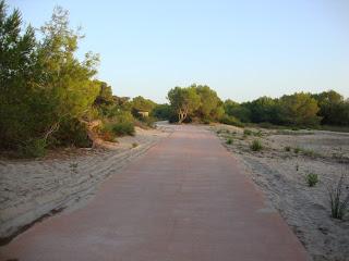 Run Trail - La Devesa Beach - Valencia - Spain