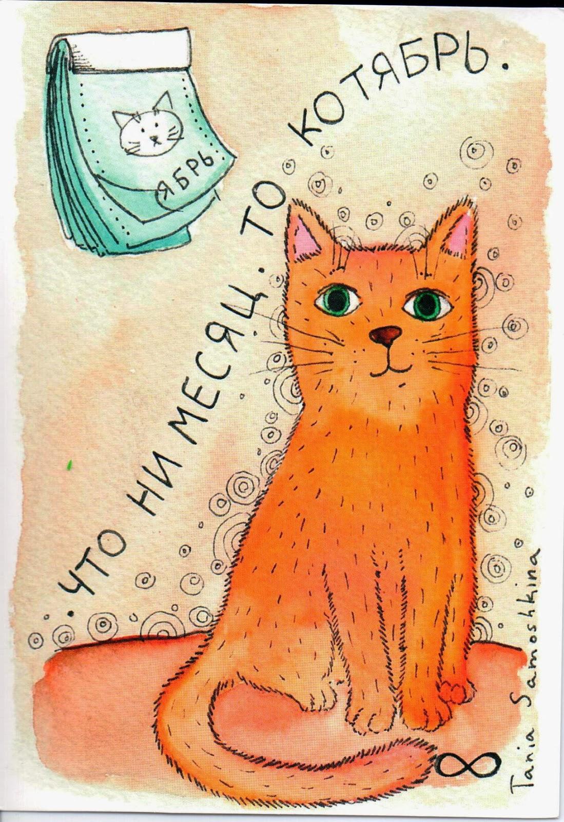 Открытки в мире кот