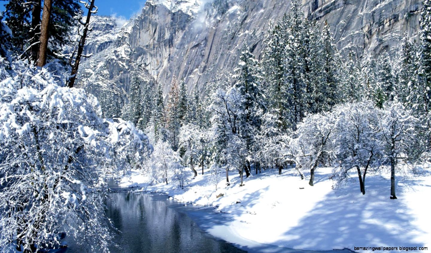 beautiful winter nature pictures   Google Search  Nature