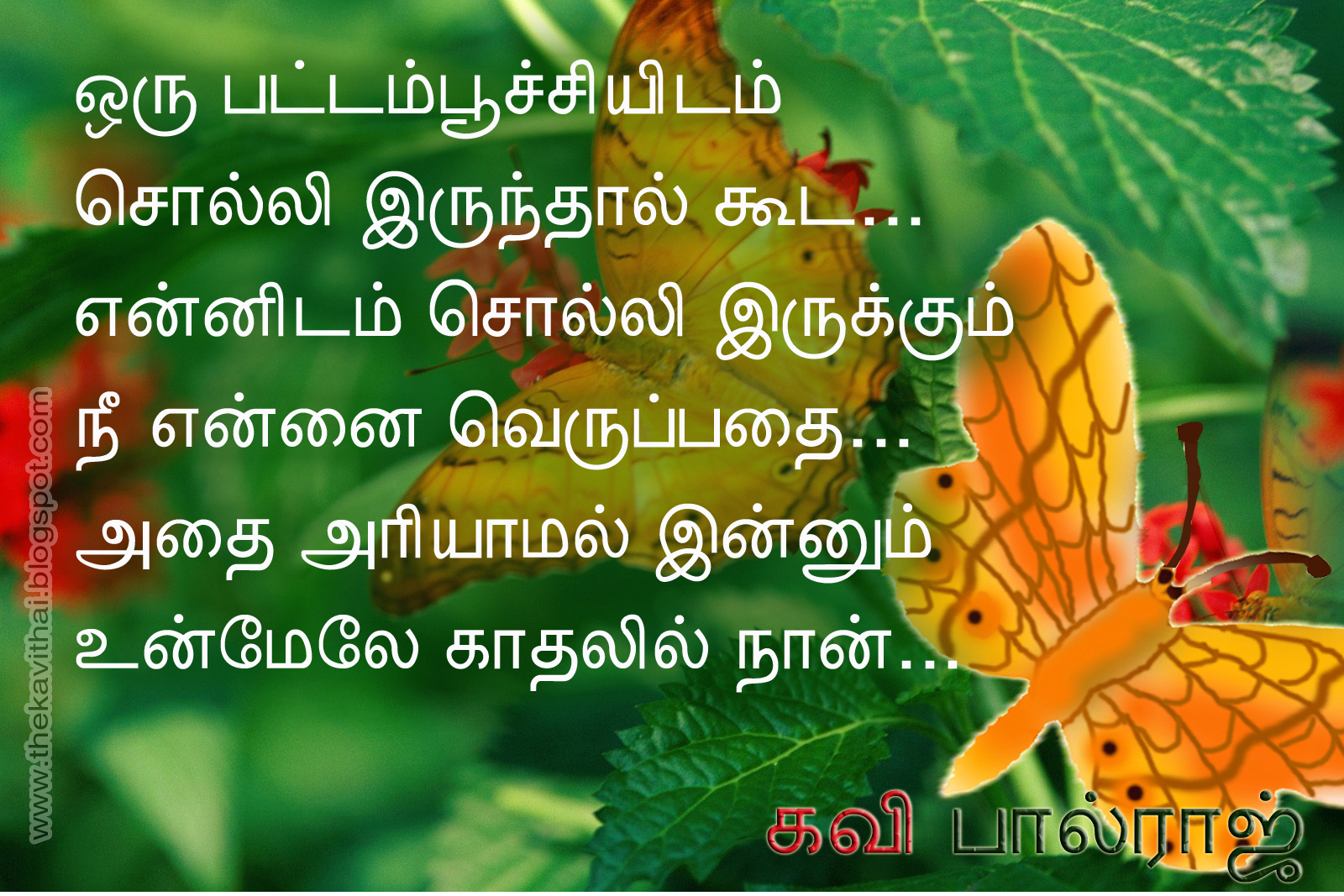 Tamil Kavithai Wallpaper