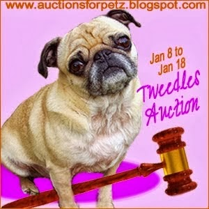http://auctionsforpetz.blogspot.com/search?updated-max=2014-01-08T05:56:00-08:00&max-results=45