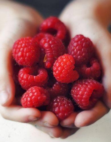 healthy raspberry