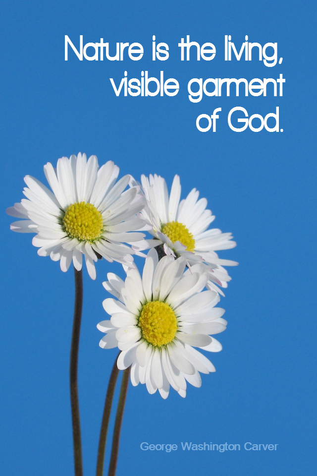 visual quote - image quotation for NATURE - Nature is the living, visible garment of God. - George Washington Carver