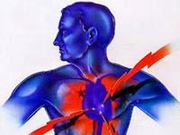 Inilah Cara Murah Terhindar Penyakit Jantung