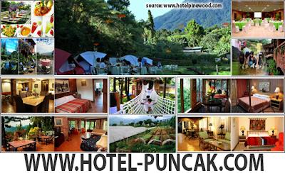 <b>pinewood-hotel-puncak</b>