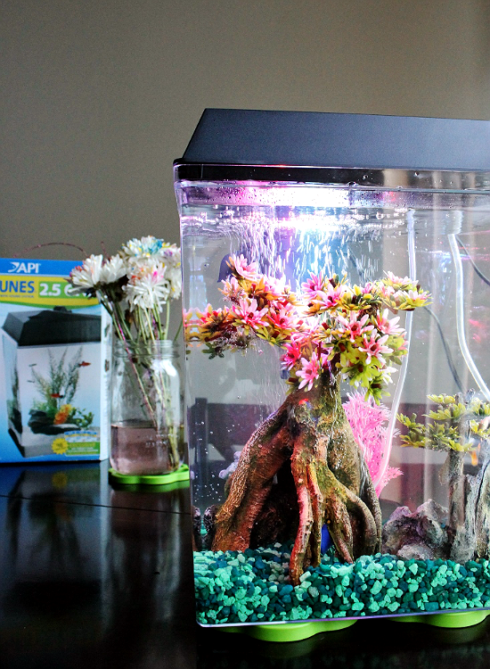 API AquaTunes 2.5 Gallon Aquarium- Plays MP3s and Soothing Sound Clips For Your Office or Child's Bedroom. #sp