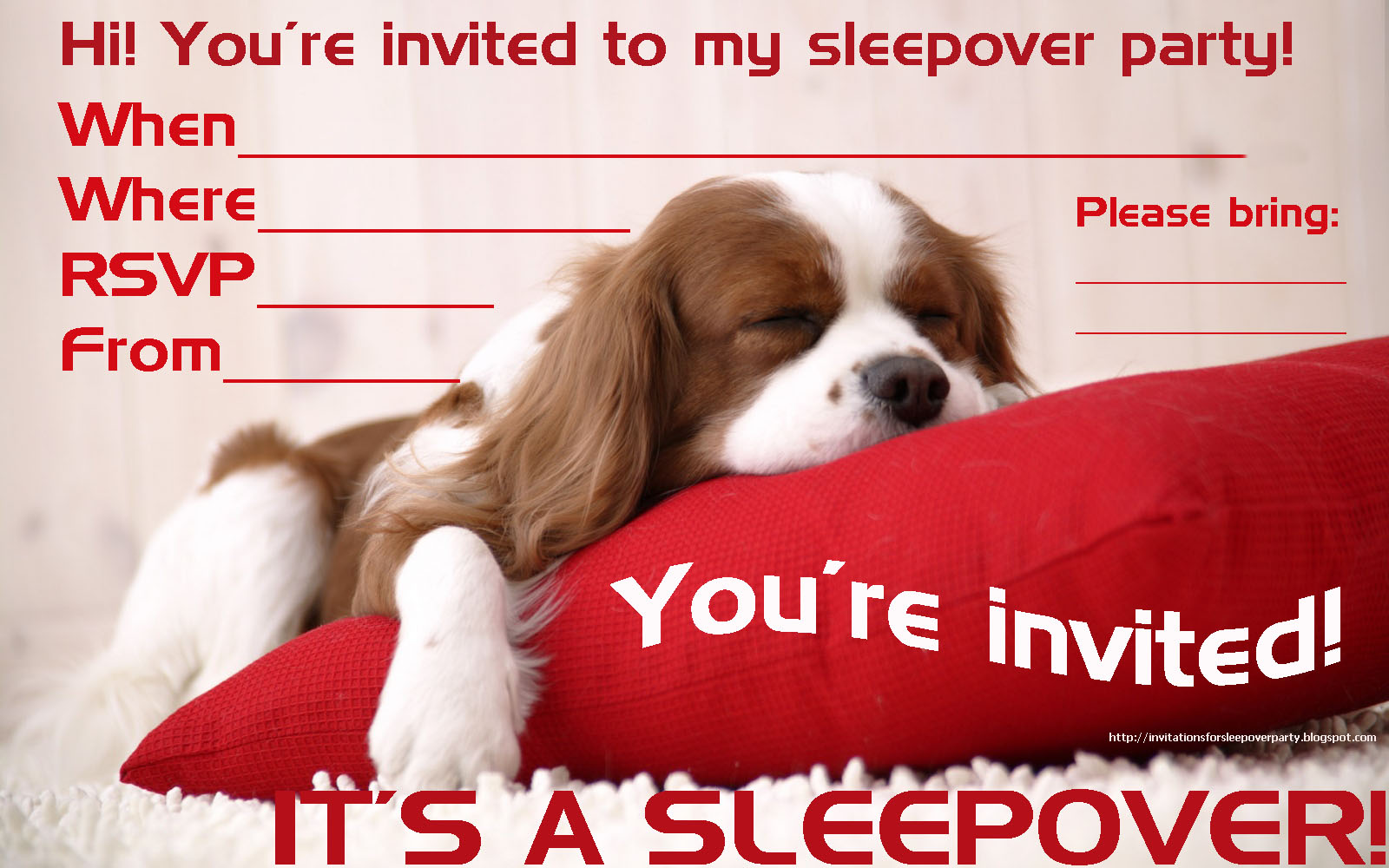 INVITATIONS FOR SLEEPOVER PARTY – Invitations for Sleepover Party